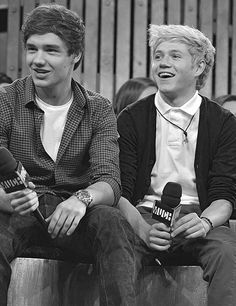 Liam and Niall. my favez.