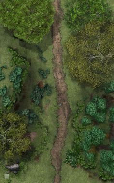Deciduous Forest Road n-s trail nw Fantasy World Map, Fantasy City, Dungeons And Dragons Homebrew, D&d Dungeons And Dragons, Forgotten Realms, Pathfinder Maps, Forest Map, Rpg Map, Map Layout