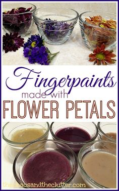 Flower Petal Fingerpaint - a fun sensory art and science activity