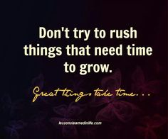 Don't try to rush things that need time to grow. Great things take time. Quotes To Live By, Me Quotes, Motivational Quotes, Funny Quotes, Inspirational Quotes, Quotable Quotes, Rush Quotes, Great Things Take Time, Life Guide