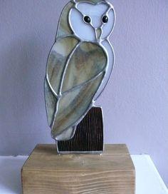 Barn Owl on Wooden Block