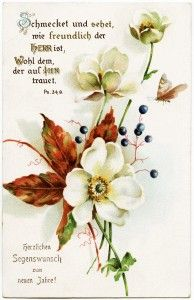 vintage floral postcard, fall colors floral postcard, free digital clipart flower, german new years postcard, white flower, red leaves, free...