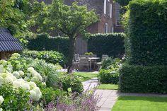 tuin tuinontwerp tuinarchitect hovenier hoveniersbedrijf tuinaanleg beplanting beplantingsplan onderhoud villatuinen gazon hortensia's borders
