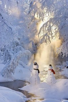 Snow Man One Cold Couple, Alaska / Winter Wonderland