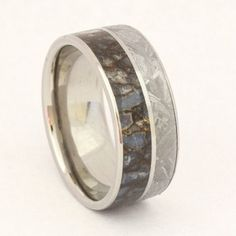 Dinosaur Bone Ring with Meteorite Inlay and a Titanium Pinstripe