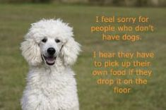 I feel sorry for people who don't have dogs. I hear they have to pick up their own food if they drop it on the floor