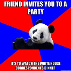 Political Science Student Panda   #politicalscience #college #student