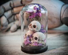 Skulls, Flowers, GLASS DOME, Miniature Sculpture, Cabinets, Bell Jars, Dried Flowers, Nature