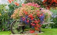 Cottage Garden Ideas - Bing Images