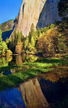 El Capitain Reflection - Yosemite National Park, California