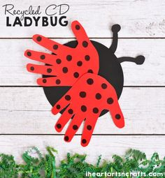 Recycled CD Ladybug Here's a fun eco-friendly and handprint craft. Great to make with little kids.