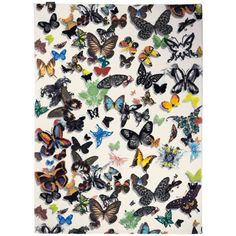 Christian Lacroix Butterfly Parade Opalin Rugs | Modern Rugs