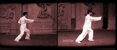 Chen Style Taiji & Yang Style Taiji (Tai Chi) Side by Side - #TaiChi #Taijiquan