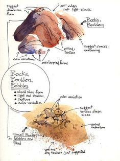 Simple ways to paint rocks and gravel, Creating Textures in Watercolor. #watercolorarts