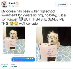This cousin who found an adorable way to include her dog in her pregnancy news.