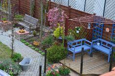 Modest Garden kert