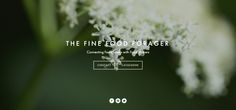 WEB DESIGN: Interim landing page I designed for my new company - The Fine Food Forager  http://www.thefinefoodforager.co.uk/  September 2015