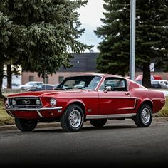 This 1968 Ford Mustang GT fastback received a fresh, ground-up restoration. It's powered by a engine paired with a manual transmission. From The Matt Furukawa Collection. Ford Mustang 1968, Ford Mustang Shelby Gt500, Mustang Cars, Ford Gt, Classic Mustang, Ford Classic Cars, Porsche, Diesel Cars, Diesel Trucks