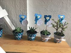 Succulent Gifts, Baby Shower Niño, Baby Favors, Baby Shawer, Christening Gifts, Planter Pots, Business, Party, Ideas