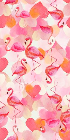 Flamingo and Hearts wallpaper Flamingo Art, Pink Flamingos, Flamingo Pattern, Pink Flamingo Wallpaper, Kawaii Wallpaper, Cute Wallpapers, Wallpaper Backgrounds, Vintage Wallpapers, Desktop Backgrounds