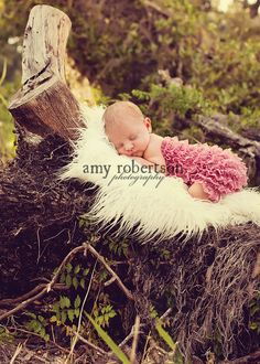 Remind me to have a place like this in my future backyard to photograph newborns.