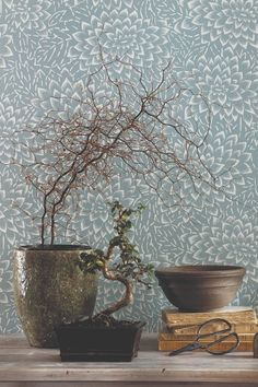 Pretty floral wallpaper pattern called Hana by Caselio.