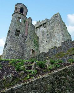 The Blarney Stone: Check!