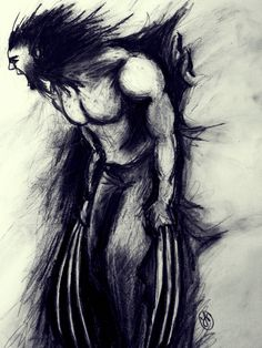 Wolverine drawing with charcoal