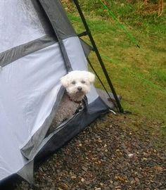 I say has it stopped raining yet ?
