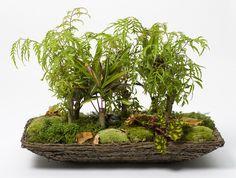 Att skapa en trivsam miljö för dina rumsväxter behöver inte vara riktigt så här avancerat.  Foto: Floradania | via Odla Nu