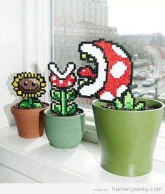 plantas-geek