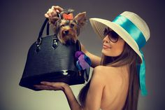 stylish girl with her puppy in bag