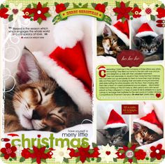 Cat scrapbook layout - 1 large, 4 small photos. (now, how will we get the cats to wear a santa hat?)