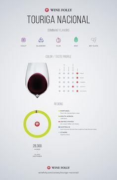Touriga Nacional Wine Taste Profile by Wine Folly #wine #winetasting #wineeducation
