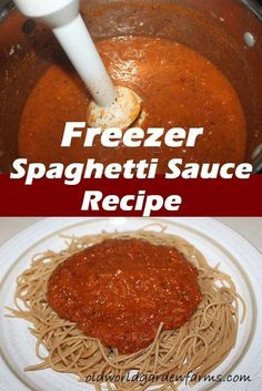 Make Spaghetti sauce from fresh tomatoes and freeze it for use all year long! Related posts:Canning Spaghetti Sauce - My Great Grandmothers canned spaghetti sauce recipe.Cremige Parmesan SpaghettiEasy Homemade Spaghetti Sauce from Homegrown Tomatoes Fresh Tomato Spaghetti Sauce, Homemade Spagetti Sauce, Freezer Spaghetti Sauce, Pasta Sauce With Fresh Tomatoes, Tomato Pasta Sauce, Homemade Tomato Sauce, Spaghetti Sauce For Canning, Fresh Tomato Recipes, Canning Recipes