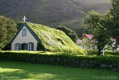 This is an Icelandic turf roof on a church in Hof, southeast Iceland. More pictures at www.naturalhomes.org/timeline/hofskirkja.htm