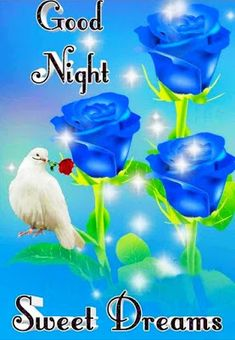 Good Night Images Good Night Quotes Images, New Good Night Images, Romantic Good Night Image, Lovely Good Night, Good Night Flowers, Beautiful Good Night Images, Good Night Gif, Good Night Sweet Dreams, Have A Good Night
