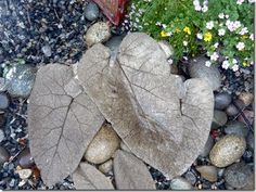 Cement leaves tutorial. This would make an amazing fountain!...I NEED these in my life...as soon as I have my own yard :-/