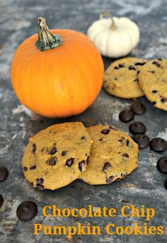 The Best Chocolate Chip Pumpkin Cookies Recipe - Mom Always Finds Out Pumpkin Cookie Recipe, Pumpkin Chocolate Chip Cookies, Pumpkin Recipes, Fall Recipes, Holiday Recipes, Delicious Desserts, Dessert Recipes, Yummy Food, Best Cookie Recipes