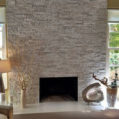 Living Room contemporary fireplace