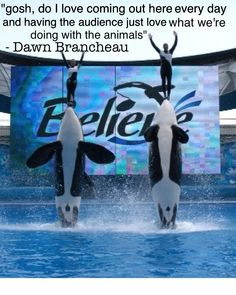 Dawn Brancheau was an incredible woman, who remains a wonderful role model in my life. Rest in Peace <3 .. she would've wanted her work to be continued! I support her dream, and I support SeaWorld!! <3