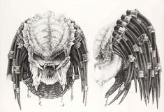 predator-fan-art deviantART favourites