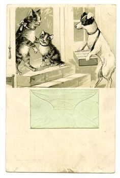 vintage-cat-postcard-cigarette-seller-JRT-dog-tabby-cats-at-door-1903-envelope