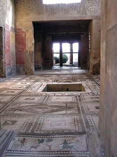 The House of Paquius Proculus (Pansa) on the south side of the Via dell'Abbondanza Pompeii  was excavated in 1911.  Remains of 7 children were found inside one room.  Mosaic floors surround the impluvium.