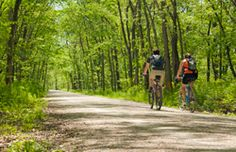 Trail Directory - Columbia Parks and Recreation Visit Columbia, Volunteer Programs, Trail Maps, Weekend Fun, Parks And Recreation, Missouri, Kansas, The Neighbourhood, Country Roads