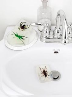 Bug Soaps