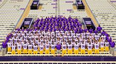 Discover recipes, home ideas, style inspiration and other ideas to try. Lsu Tigers Football, Football Team, Football Shirts, Football Wallpaper Iphone, Cfp National Championship, Football Facemask, Coach Of The Year, Football Quotes, Louisiana State University