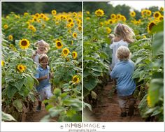 Sunflower Session  Morgan Family