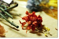 Todas en algún momento deberíamos ser 'Floristas por un día!  Magnolia and Co. Taller de Flors