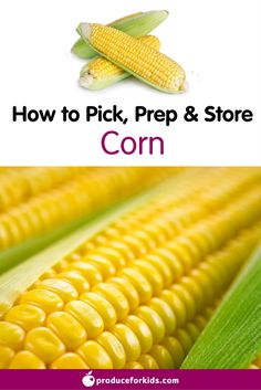 How to Pick, Prep & Store Corn + nutrition information, recipes, fun facts and more!